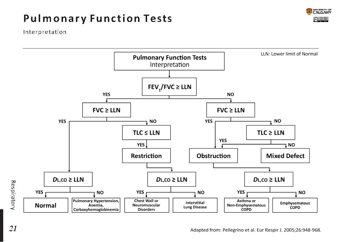 PULMONARY FUNCTION TESTS Scheme
