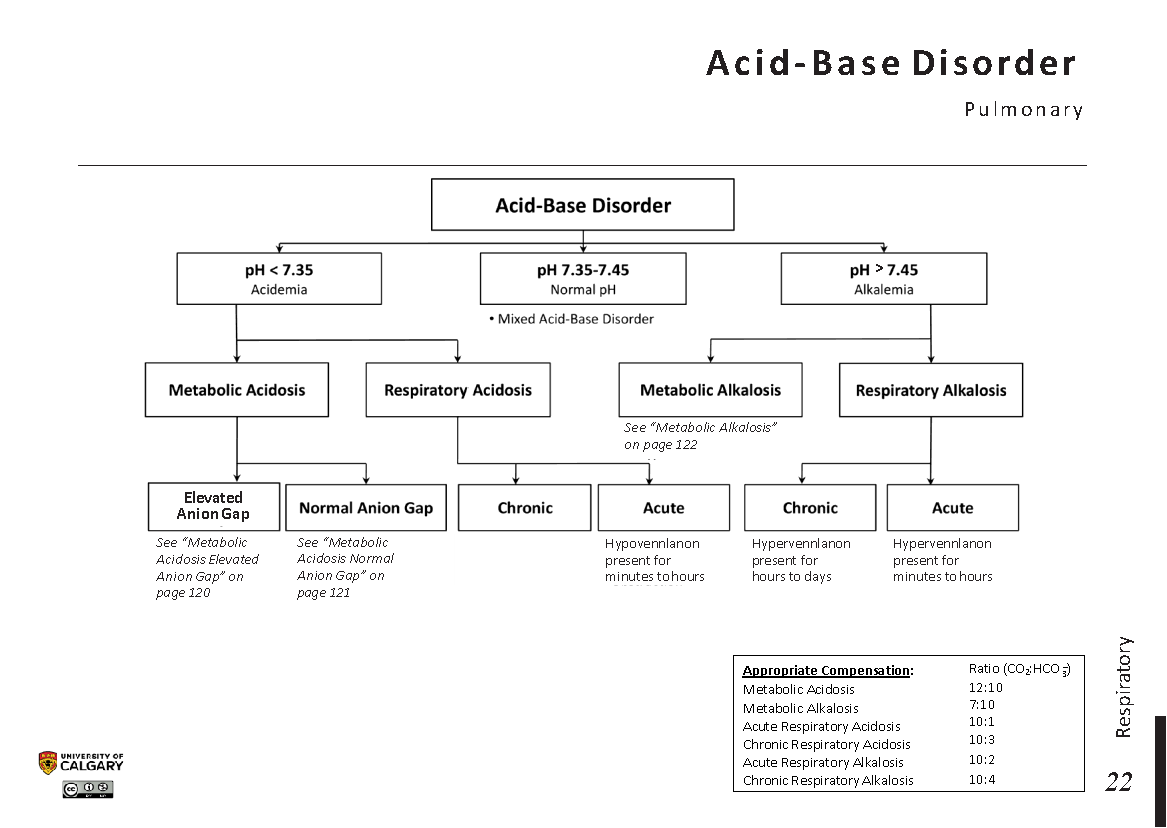 ACID-BASE-DISORDER: Pulmonary Scheme