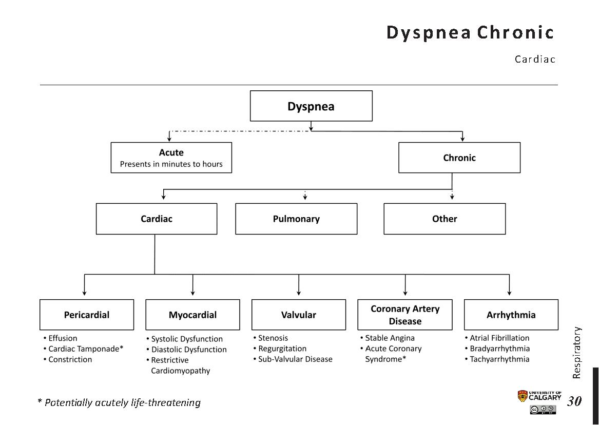 DYSPNEA: Chronic – Cardiac Scheme