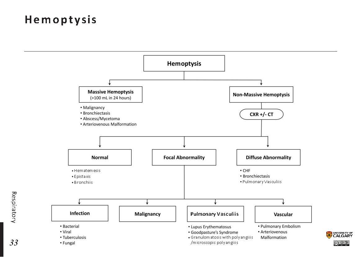 HEMOPTYSIS Scheme