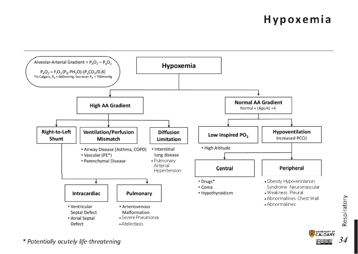HYPOXEMIA Scheme