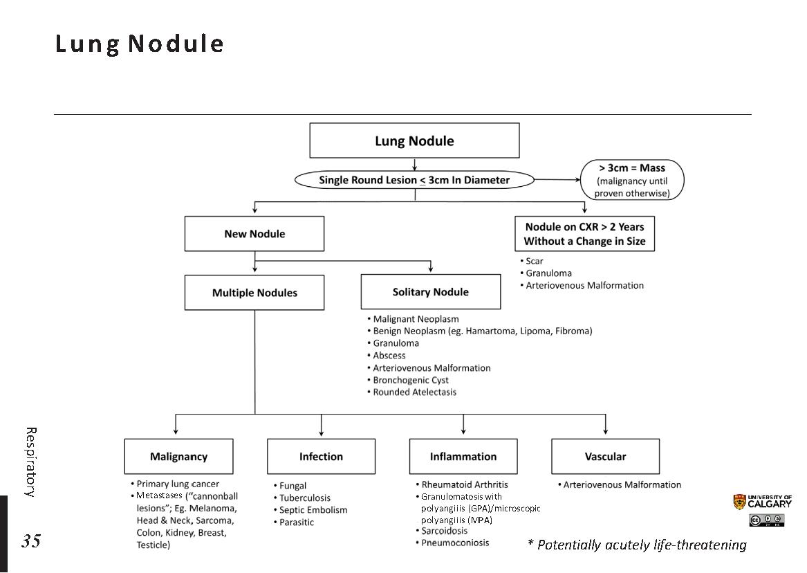 Lung Nodule Scheme