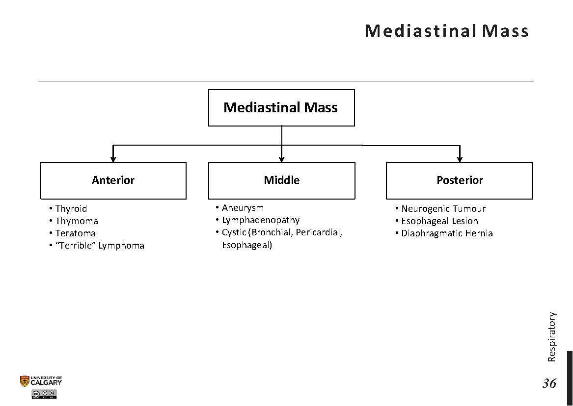 MEDIASTINAL MASS Scheme