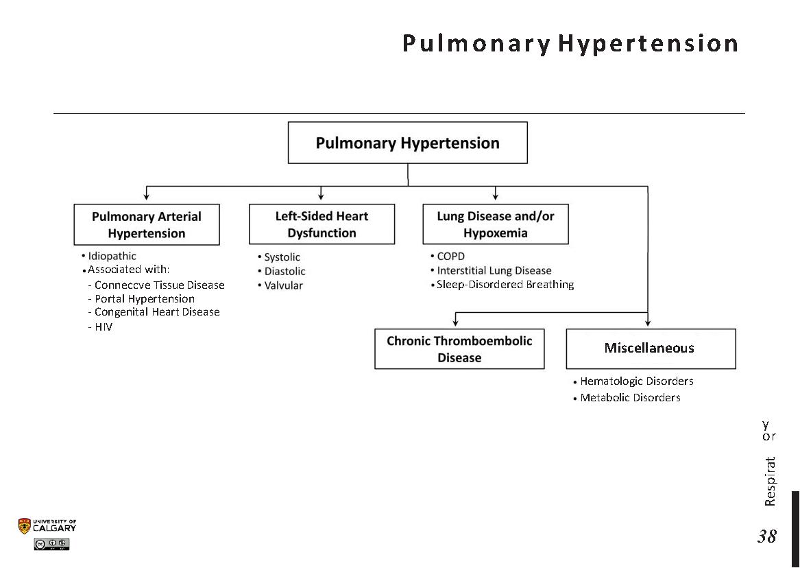 PULMONARY HYPERTENSION Scheme