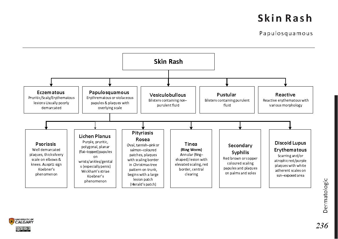 SKIN RASH: Papulosquamous Scheme