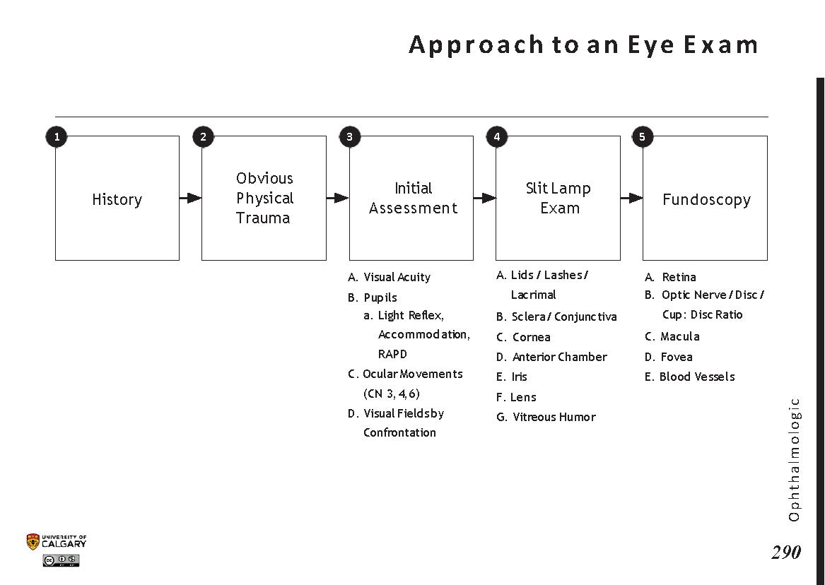 APPROACH TO AN EYE EXAM Scheme
