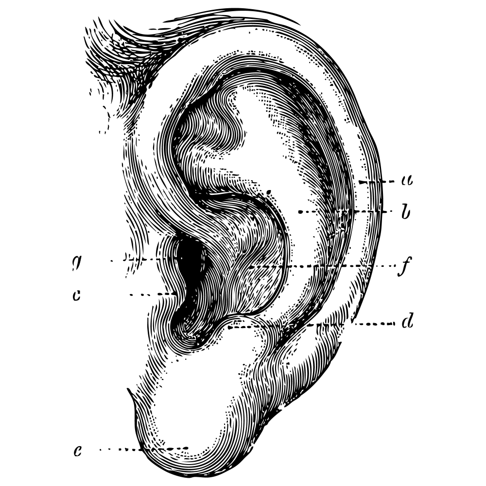 Otolaryngologic
